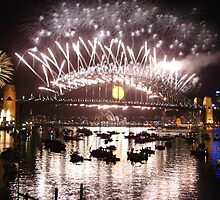 Happy New Year Aussie Style! by missmrg