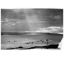 Never a Dull Day - Snapper Rocks Poster