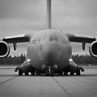 C-17 in Alaska by Clemsonpilot