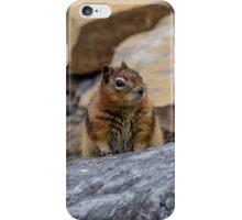 Chipmunk in Lake Louise, the Canadian Rockies iPhone Case/Skin