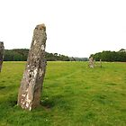 Nether Largie Standing Stones by kalaryder