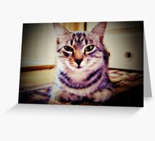 little sphinx  Greeting Card