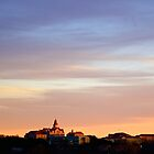 Castle on a Hill - St. Edward's University - Austin, TX by MalinRawl