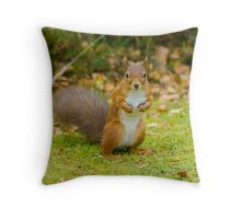 See You Jimmy Throw Pillow