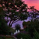 Sunset in the garden by Celeste Mookherjee