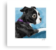 Boston Terrier watercolor Canvas Print