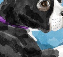 Boston Terrier watercolor Sticker