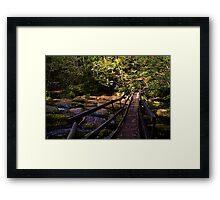 Log Bridge Framed Print