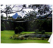Mt Warning Peeking Poster