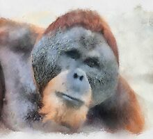 Orangutan by Eve Parry