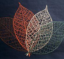 Four Seasons by Lisa Richards