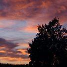 Sunset over Pakila by homesick