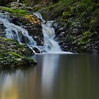 LAMINGTON NATIONAL PARK FALLS by RhondaR