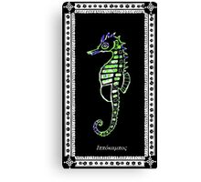 Hippocamus guttulatus -  Sea horse Canvas Print