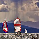 Sailing off Mull by David Alexander Elder