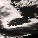 Norquay: in Dramatic Silhouette by Ryan Davison Crisp