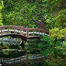 Japanese Garden by Inge Johnsson