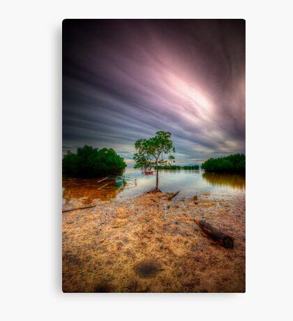 Cloud Zoom 3.0 Canvas Print