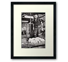 CRUSTY OLE SHEARER Framed Print
