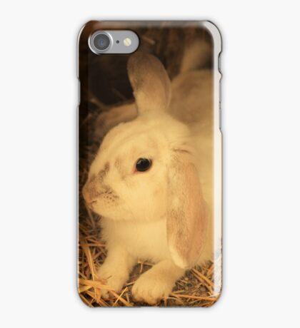 Domesticated Rabbit iPhone Case/Skin