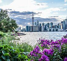 The CN Tower and Toronto skyline by Luke Farmer