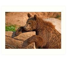 Teddy bear (II) Art Print