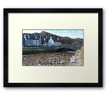 Paul Daniel's doves take a walkabout in Sandsend Framed Print