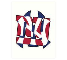 New York Sports teams Art Print