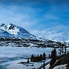Summit of White Pass by Yukondick