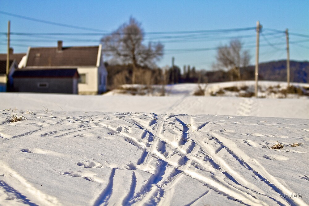 Snow. Landscape by tutulele