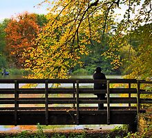 Autumn over Bridge by GlennB