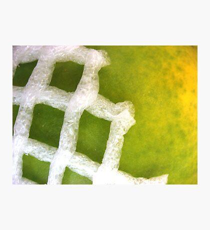 Papaya Abstract Photographic Print