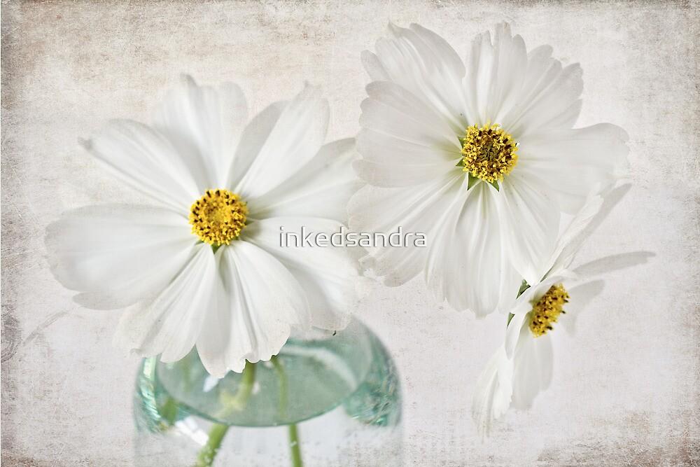 White Delight by inkedsandra