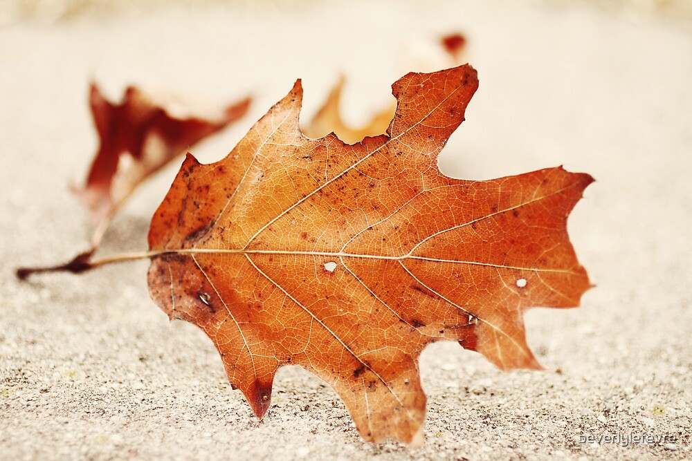 October by beverlylefevre