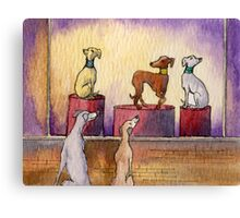 Whippets and greyhounds window shopping Canvas Print