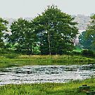 Beautiful Pennsylvania Lake by Monica Engeler