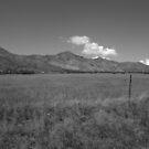 B&W Landscape by B-BUBBLE