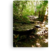 Hiking Raven's Run  Canvas Print