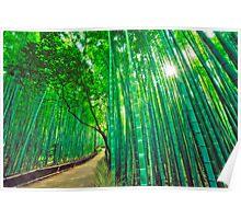 Bamboo forest at Sagano - Arashiyama (Kyoto) Poster