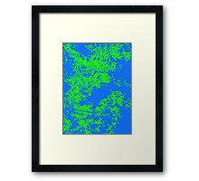 Series: Leaves 3  Framed Print