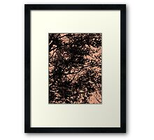 Series: Leaves 12 Framed Print