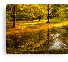 Отражение осени -Fall Reflection Canvas Print
