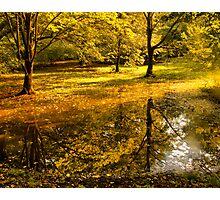 Отражение осени -Fall Reflection Photographic Print