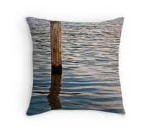 Post in Tranquil Water Throw Pillow