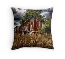Ramshackle Barn Throw Pillow