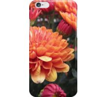 Bright Orange Flowers iPhone Case/Skin