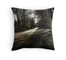 Skewed Road Throw Pillow