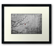 Christmassy Mountain Ash Framed Print