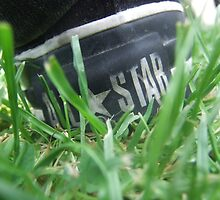 All Star Ant view by EBGB666