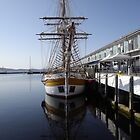 graceful lines on the tall ships by gaylene